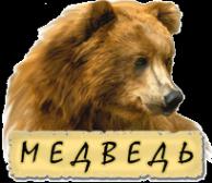 Логотип компании Медведь