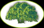 Логотип компании Легаси.ру ЛТД