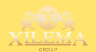 Логотип компании Xilema