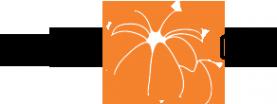 Логотип компании Мандарин-Строй