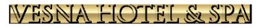 Логотип компании Весна